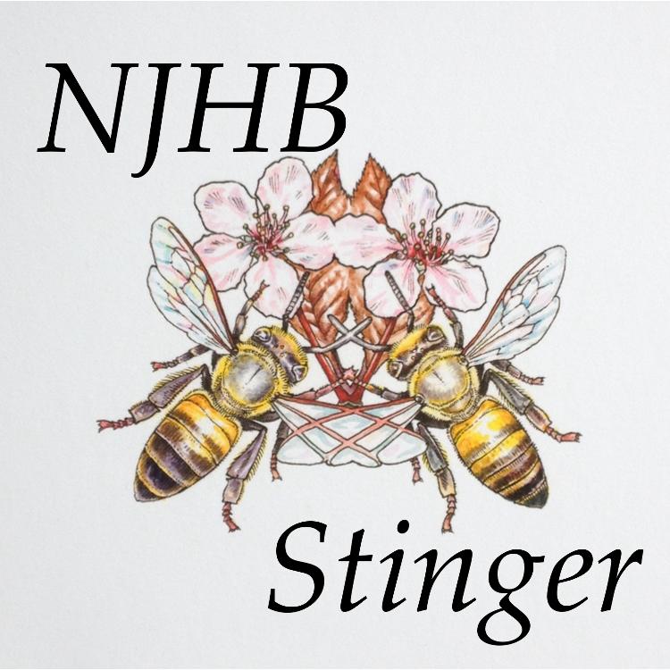 hll1037-stinger-front-750.png